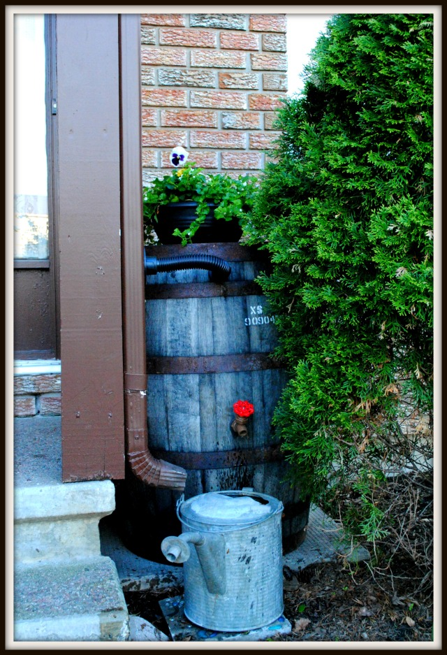 Front door rain barrel